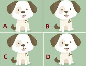 هل تستطيع تمييز الصورة المختلفة